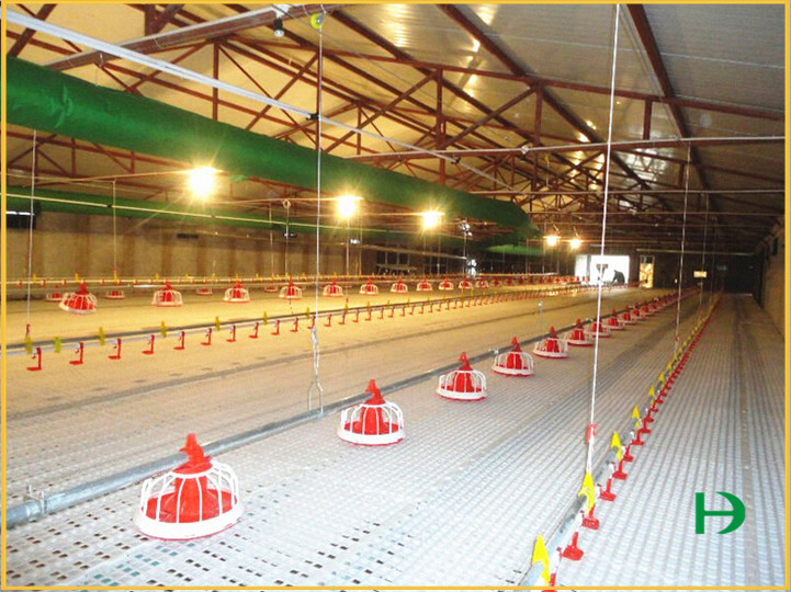 automatic drinking line,chicken drinking line,poultry drinking line
