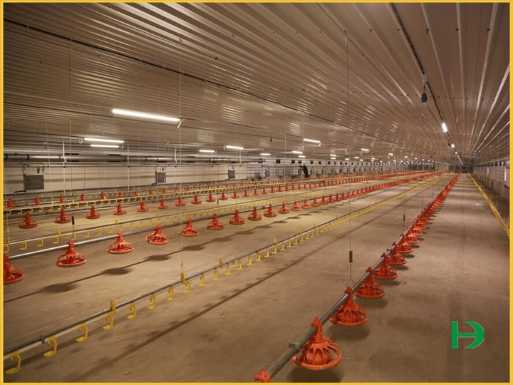 Chicken feeder pan,broiler pan feeding system,chicken pan feeders