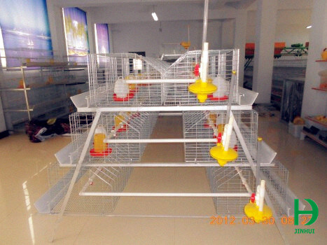 cage for chicks