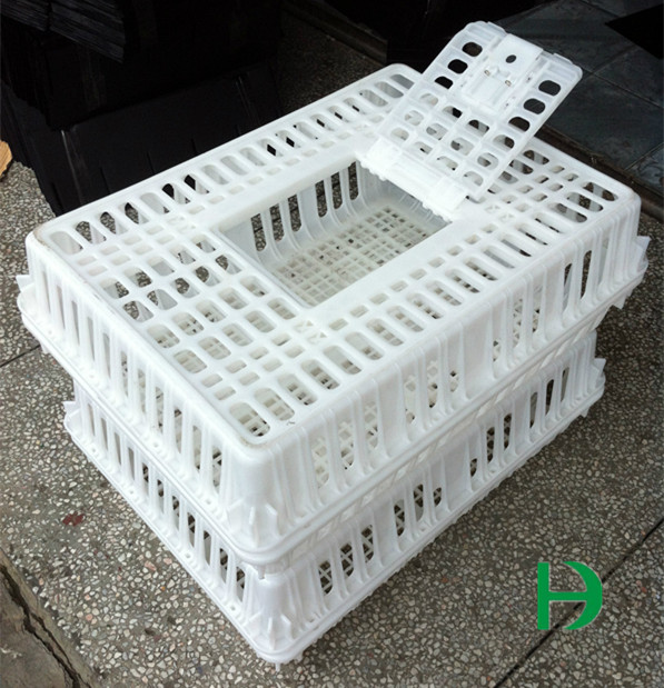 Cages For Transporting Chickens Turnover Box Poultry