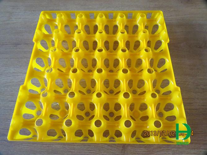 egg tray plastic egg tray egg holder